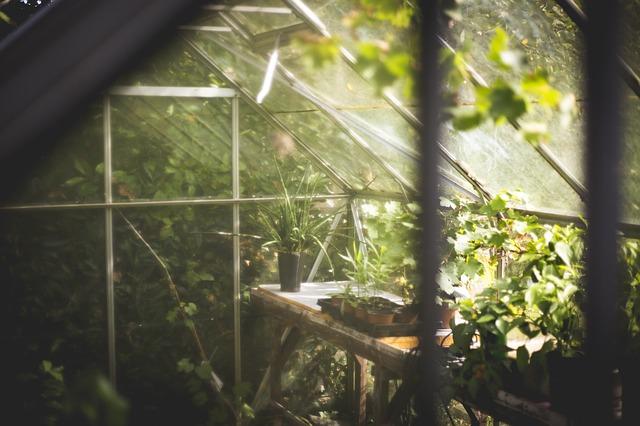 Polykarbonátové zahradní skleníky za skvělé ceny